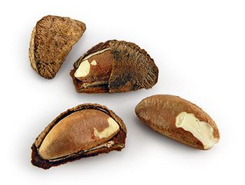 brazil nuts testosterone shelled