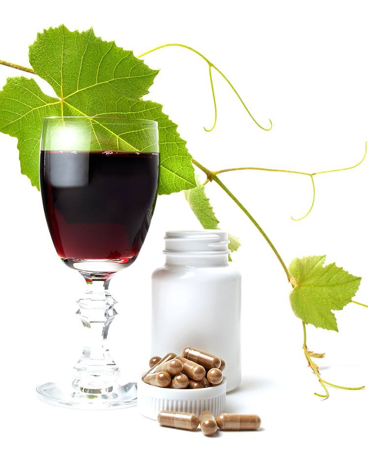 japanese knotweed supplement red wine