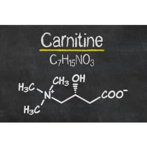 carnitine structure