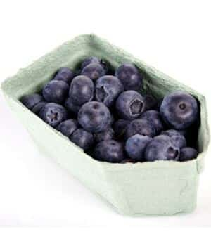 Natural Vasodilators: Foods That Increase Sexual Function blueberries