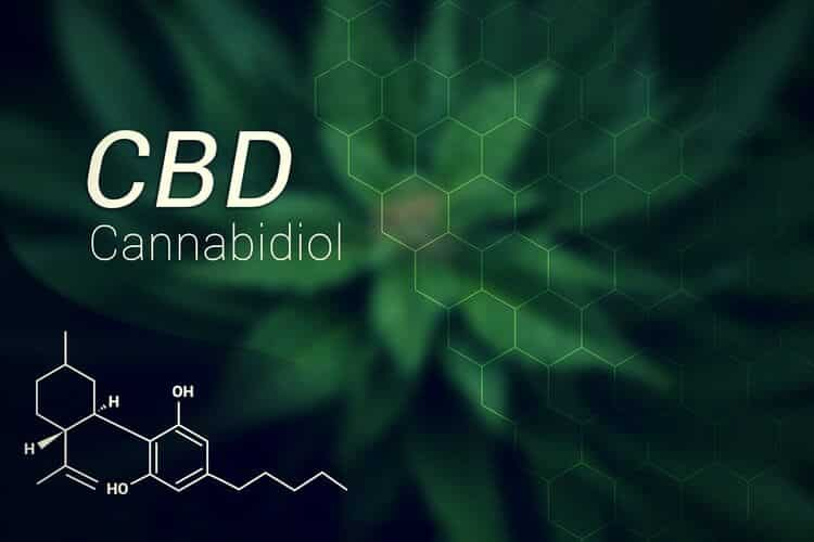 CBD Oil for Sale CBD intro