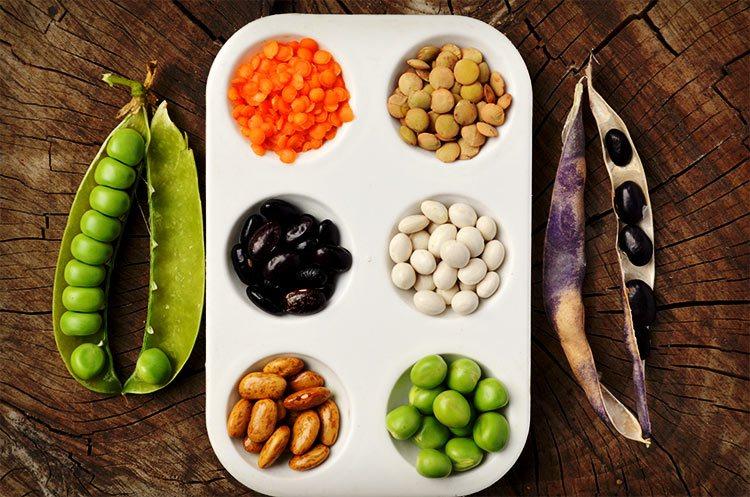 beans tray