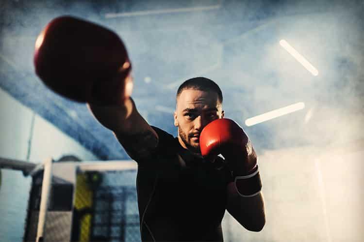 Kegenix reviews boxer